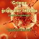 Buch: Die biologische Therapie der Grippe - von René Gräber
